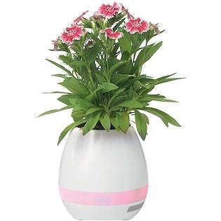 Høytaler Vase, 5W