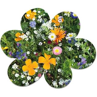 Tarjeta de semillas Bloom