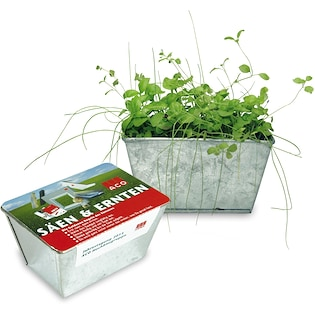 Yrttipuutarha Herb