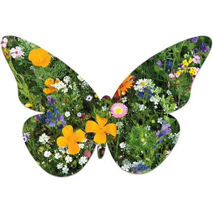 Frökort Butterfly